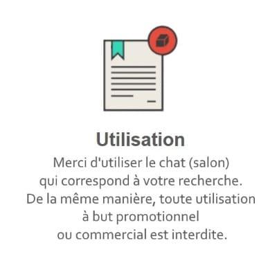 Règles du Tchat Gratuit de Rencontre-Maigre.eu